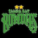 Tampa Bay Rowdies