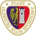 Piast Gliwice Sub 19