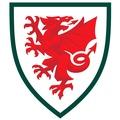 Pays de Galles Sub 16