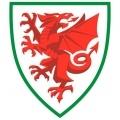 Pays de Galles Sub 15
