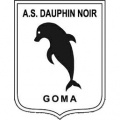 >Dauphins Noirs