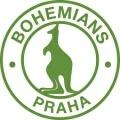 FK Bohemians (Střížkov)