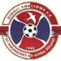 Dingli Swallows