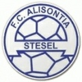 Alisontia Steinsel