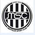 Escudo MSC