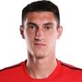 D. Sagutkin