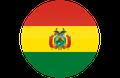 https://t.resfu.com/media/img/flags/round/bo.png