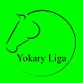 Liga Turkmenistán