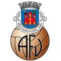AF Viseu Divisão Honra