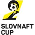 Cup Slovakia