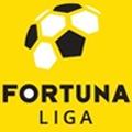 Slovakian Super Liga