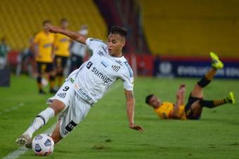 Quais as chances do Santos ser rebaixado para a Série B do Brasileirão?. EFE