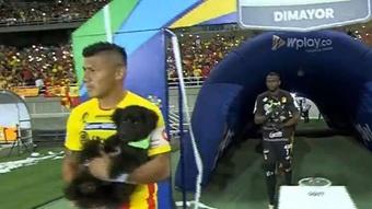 ¡Jugadores de Deportivo Pereira saltaron al verde con perros en sus brazos! Captura/WinSports