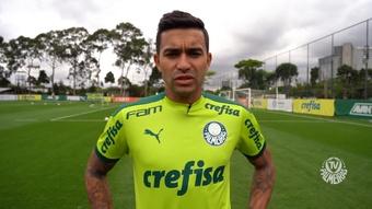 Dudu espera que Palmeiras retome o caminho das vitórias contra o Bahia. DUGOUT